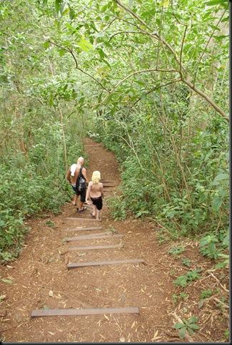 Maunawili hike 157