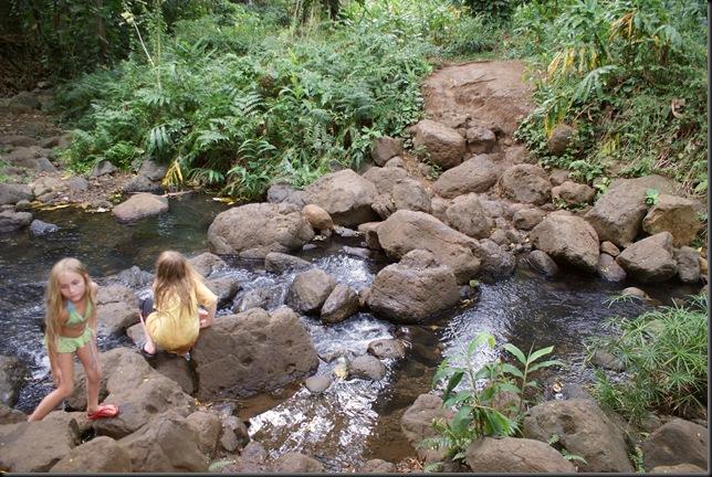 Maunawili hike 202