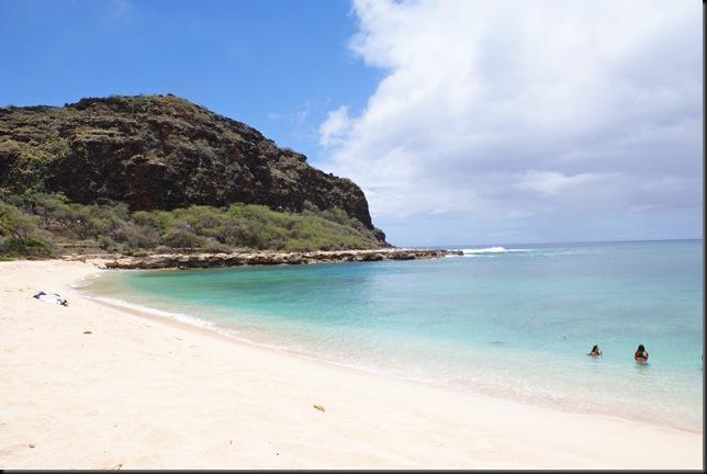 Turtle Beach 010