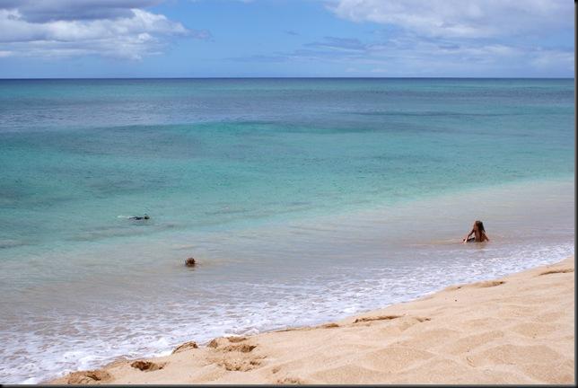 Turtle Beach 011