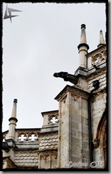 Palencia (25)