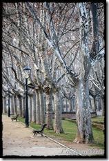 Parque_Labordeta (2)
