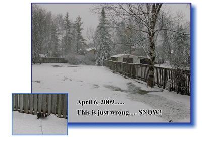 April 6,2009 SNOW