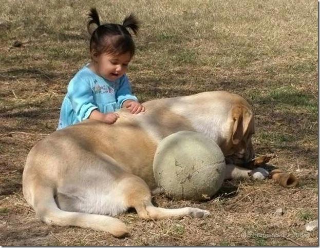 1 - niños con perros misimagenesdivertidas  (24)