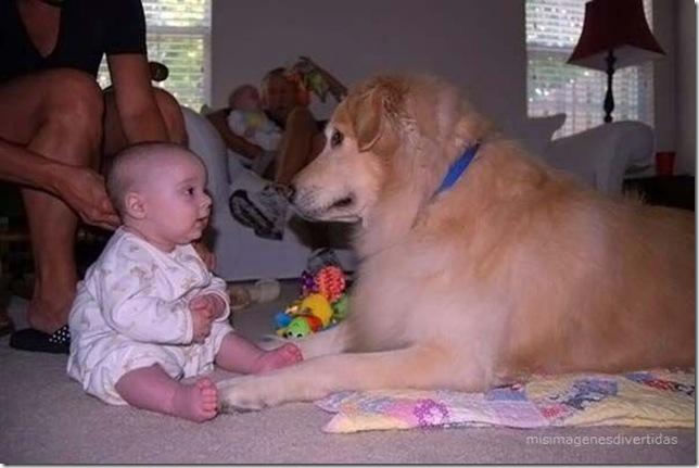 1 - niños con perros misimagenesdivertidas  (30)
