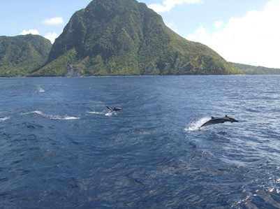 Passeio de barco em St Lucia. Com a maior sorte do mundo consegui apanhar quatro golfinhos em pleno salto nesta foto. Digam lá se não está um mimo! Cliquem para verem no tamanho original