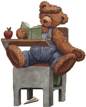 Study Bear