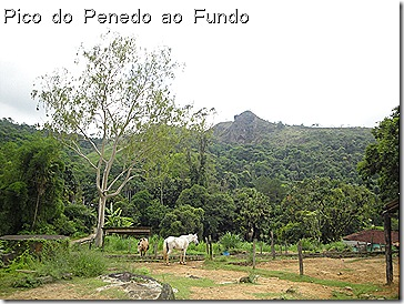 Pico do Penedo dez09