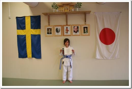 Karategradering vt 2010 014