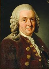 Carl Linnaeus-Father of Taxonomy