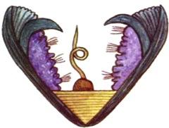 Glochidium-larvae-unieo