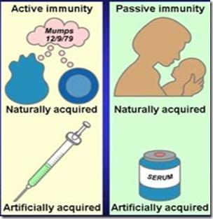 immunity-active-passive