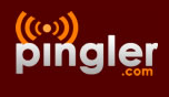 Blog and Ping Tool - Use Pingler.com to Drive Traffic your Blogs and Websites_1288851458547