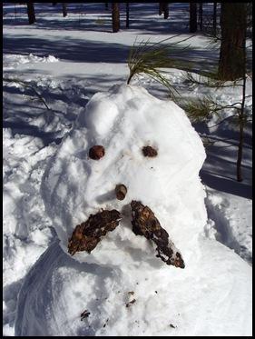 officer snowman
