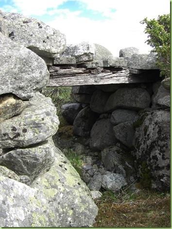 Tur til Murdalsetra i Skåbuferien juni 09 034