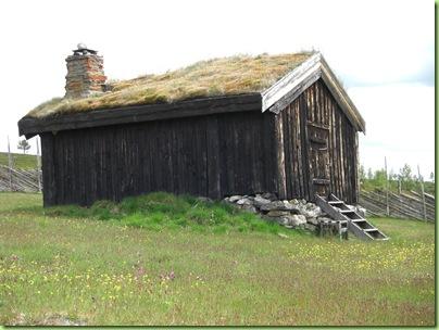 Tur til Murdalsetra i Skåbuferien juni 09 018