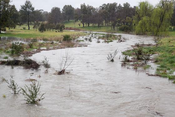 Ginninderra Creek in flood