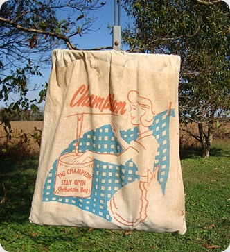 Vintage Clothes pin bag 2