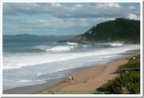 picture_brazil_sea_beach