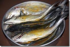 Jom masak Ikan bakar 15.2.2011 003