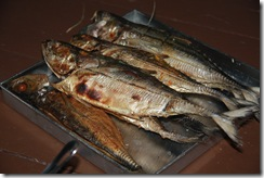 Jom masak Ikan bakar 15.2.2011 017