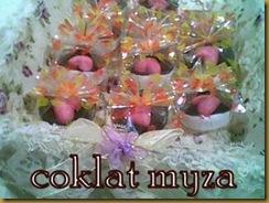 Coklat 5.3.2011 135