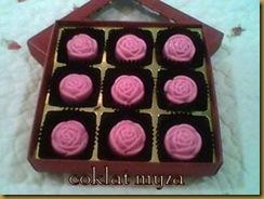 Coklat 5.3.2011 098