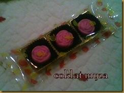 Coklat 5.3.2011 099