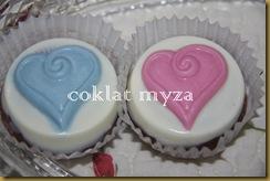 Coklat 16.3.2011 033