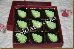Coklat Myza 19.3.2011 002
