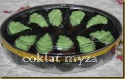 Coklat Myza 19.3.2011 011