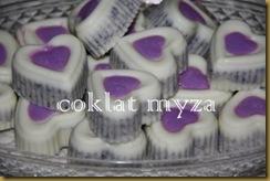 Coklat Myza 19.3.2011 019