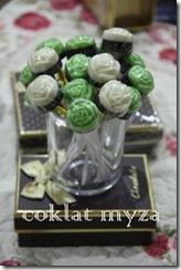 Coklat Myza 19.3.2011 044