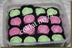 Coklat 30.3.2011 012