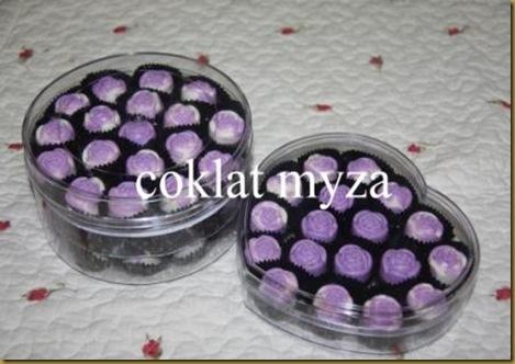 Coklat 1.4.2011 017