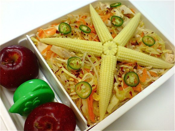 chicken cabbage salad bento