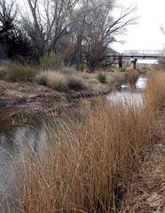 Sand Pedro River