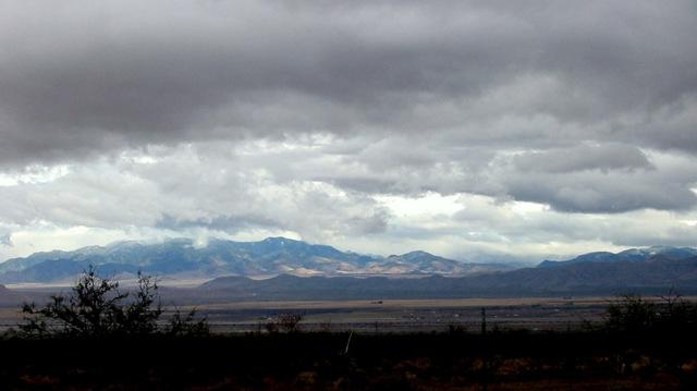 Chiricahua Mtns.