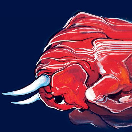 Toro Rosso twitter profile image