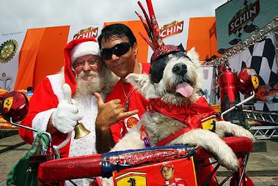 болельщик Ferrari Санта и собака на Гран-при Бразилии 2009