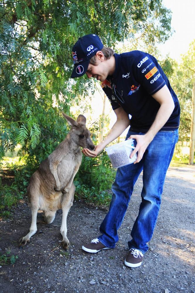 Себастьян Феттель кормит кенгуру на австралийской ферме
