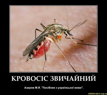 demotivators.org.ua-162546-3