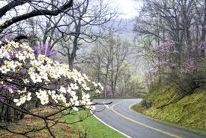 shenandoah national parks traveler