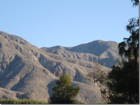 Palm Springs 3 003