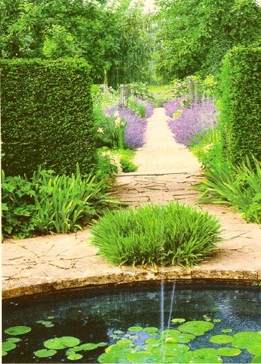Lavender Garden Pathway