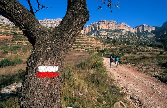 GR 171 a la vora de la cartoixa de Scala Dei, al fons els cingles de la Serra Major del Montsant, Parc Natural, La Morera de Montsant, Priorat, Tarragona