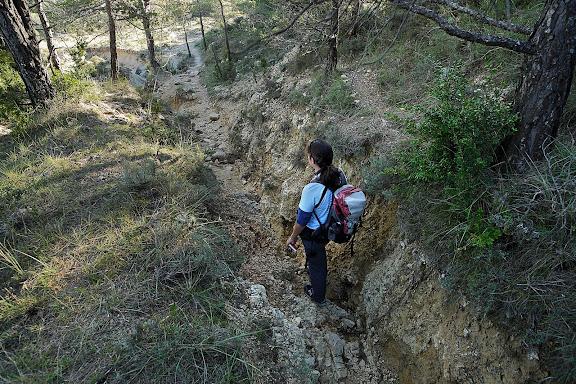 Erosió a l'antic camí ral de Reus a  Prades sota el coll de les Saleres.Serra de la Mussara, Muntanyes de Prades.Vilaplana, Baix Camp, Tarragona
