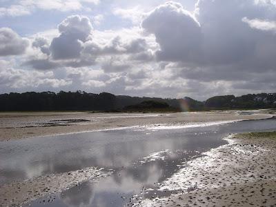 引き潮の河口