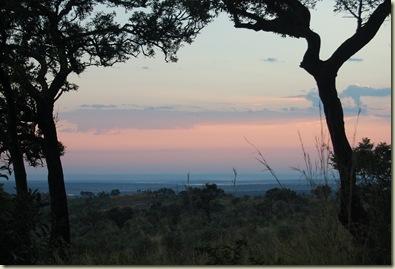Kruger Park 010
