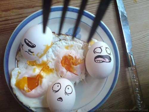 huevos miblogdecosasdivertidas (8)